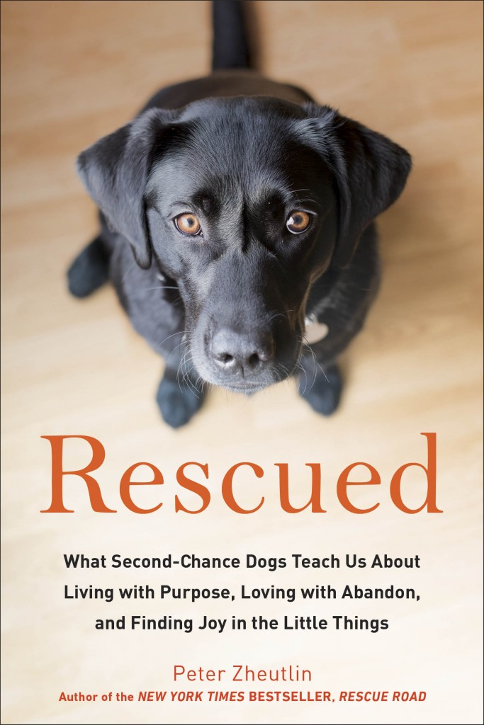 rescued-cover-683x1024