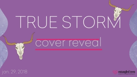 True Storm Cover Reveal Banner